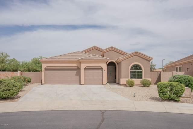 18448 W Sweet Acacia Drive, Goodyear, AZ 85338 (MLS #5954117) :: CC & Co. Real Estate Team