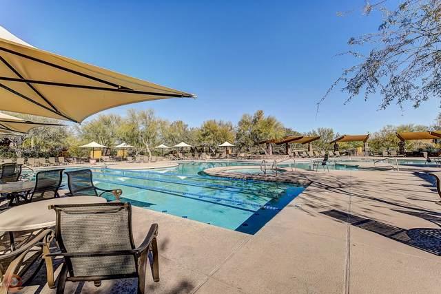 3935 E Rough Rider Road #1226, Phoenix, AZ 85050 (MLS #5954148) :: Homehelper Consultants