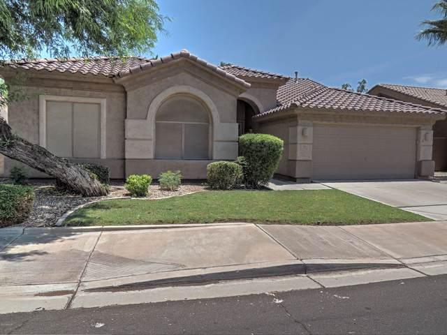 303 N Danielson Way, Chandler, AZ 85225 (MLS #5954153) :: Lifestyle Partners Team