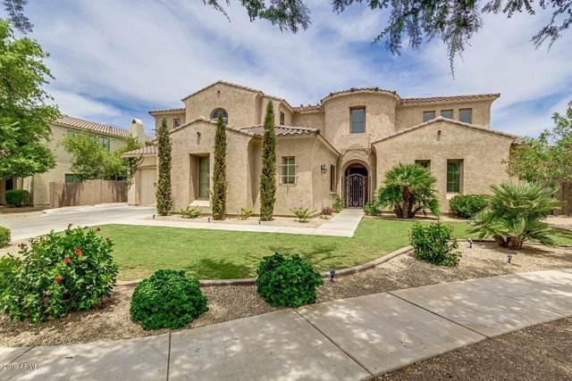20376 E Poco Calle, Queen Creek, AZ 85142 (MLS #5954163) :: Occasio Realty