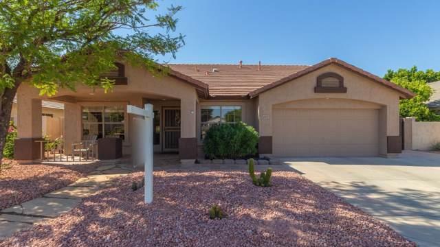 6403 W Kristal Way, Glendale, AZ 85308 (MLS #5954173) :: Conway Real Estate