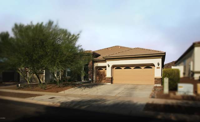 9825 S 6th Place, Phoenix, AZ 85042 (MLS #5954199) :: Conway Real Estate