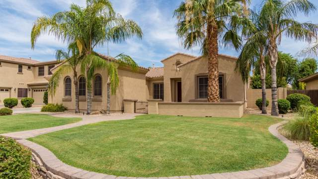 1254 E Canary Drive, Gilbert, AZ 85297 (MLS #5954200) :: Conway Real Estate