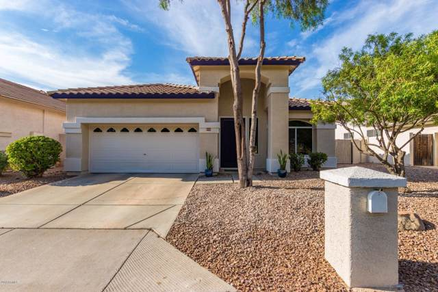 972 W San Marcos Drive W, Chandler, AZ 85225 (MLS #5954257) :: Openshaw Real Estate Group in partnership with The Jesse Herfel Real Estate Group