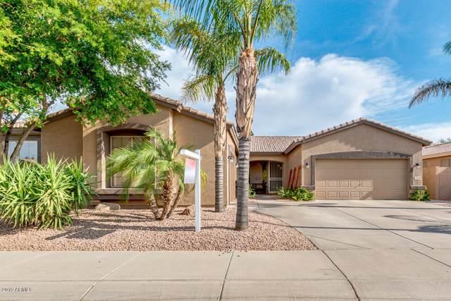 2169 W Wildhorse Drive, Chandler, AZ 85286 (MLS #5954260) :: The Kenny Klaus Team