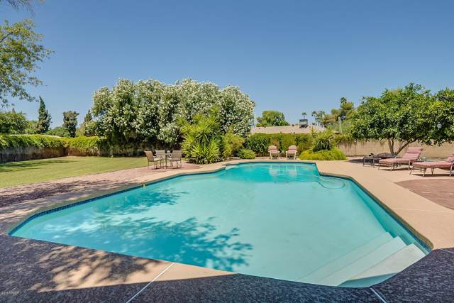 6704 S Terrace Road, Tempe, AZ 85283 (MLS #5954270) :: The Property Partners at eXp Realty