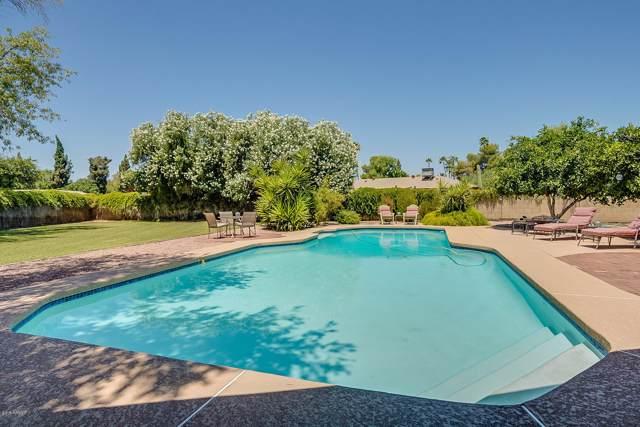 6704 S Terrace Road, Tempe, AZ 85283 (MLS #5954270) :: The Kathem Martin Team