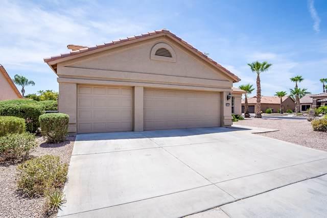 15033 W Robson Circle, Goodyear, AZ 85395 (MLS #5954301) :: Revelation Real Estate