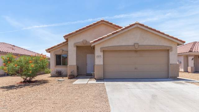 11817 W Edgemont Avenue, Avondale, AZ 85392 (MLS #5954335) :: Yost Realty Group at RE/MAX Casa Grande