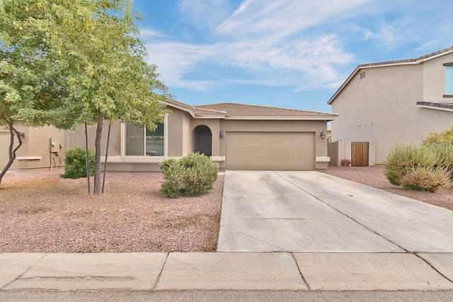 1749 W Gold Mine Way, Queen Creek, AZ 85142 (MLS #5954376) :: Riddle Realty
