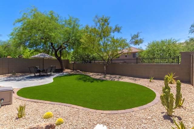 3333 W King Drive, Anthem, AZ 85086 (MLS #5954382) :: Relevate   Phoenix