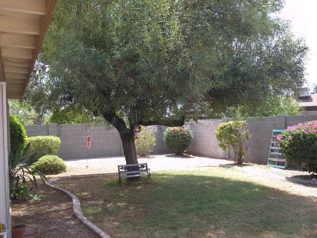 3053 W Greenway Road, Phoenix, AZ 85053 (MLS #5954395) :: The Daniel Montez Real Estate Group