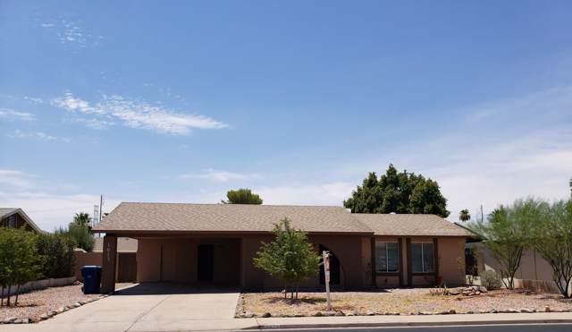 1613 W Pampa Avenue, Mesa, AZ 85202 (MLS #5954439) :: Yost Realty Group at RE/MAX Casa Grande
