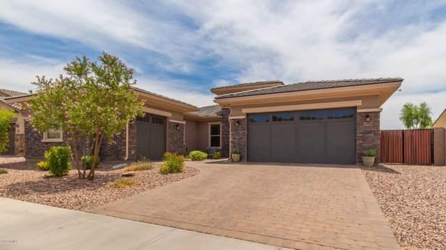 10045 W Spur Drive, Peoria, AZ 85383 (MLS #5954466) :: CC & Co. Real Estate Team