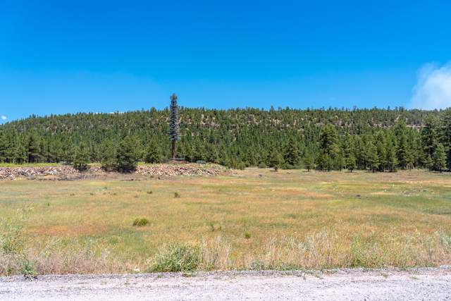 1960 Forest Service 296 Road, Flagstaff, AZ 86001 (MLS #5954539) :: Openshaw Real Estate Group in partnership with The Jesse Herfel Real Estate Group
