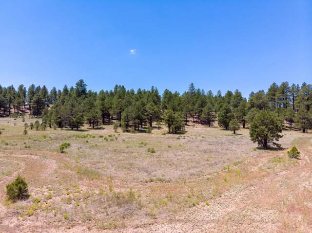 2083 Crimson Road, Flagstaff, AZ 86001 (MLS #5954548) :: Openshaw Real Estate Group in partnership with The Jesse Herfel Real Estate Group