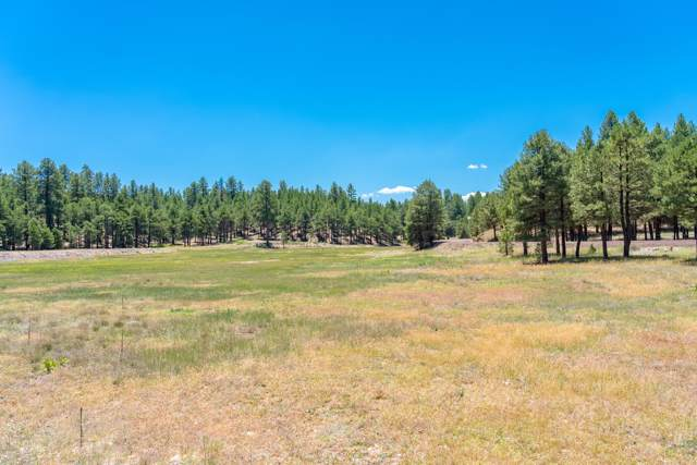 1897 Crimson Road, Flagstaff, AZ 86001 (MLS #5954562) :: Openshaw Real Estate Group in partnership with The Jesse Herfel Real Estate Group