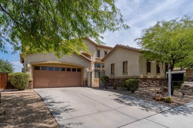 8533 W Desert Elm Lane, Peoria, AZ 85383 (MLS #5954566) :: Scott Gaertner Group