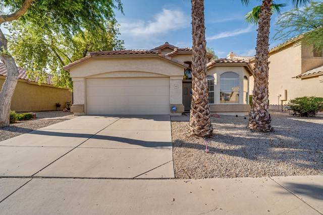 1952 W Springfield Way, Chandler, AZ 85286 (MLS #5954580) :: Relevate | Phoenix