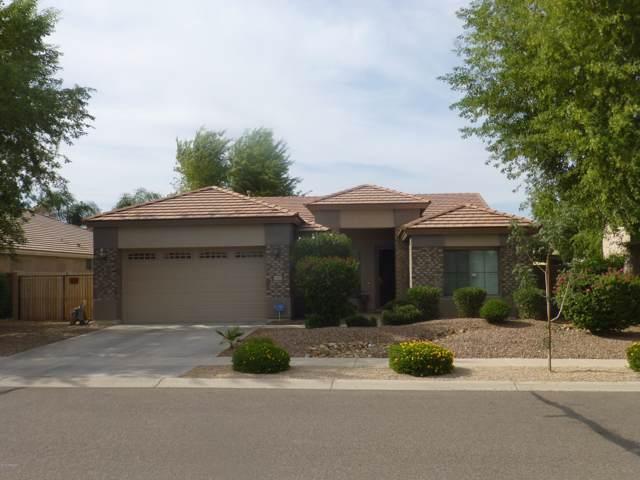 8804 W Glenn Drive, Glendale, AZ 85305 (MLS #5954659) :: Homehelper Consultants