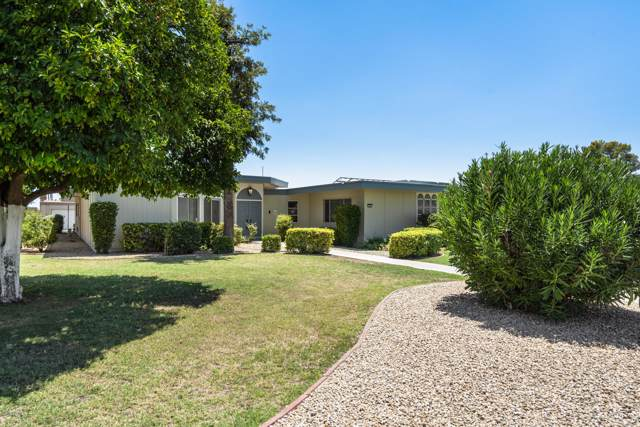 10801 W Cameo Drive, Sun City, AZ 85351 (MLS #5954768) :: The Property Partners at eXp Realty