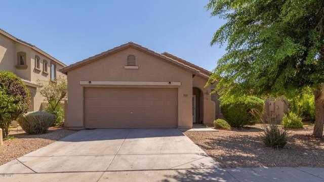 15038 N 172ND Lane, Surprise, AZ 85388 (MLS #5954771) :: Revelation Real Estate