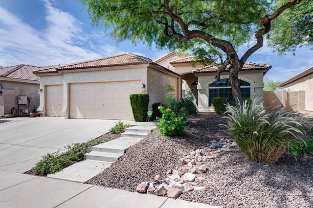 4254 E Maya Way, Cave Creek, AZ 85331 (MLS #5954816) :: Team Wilson Real Estate