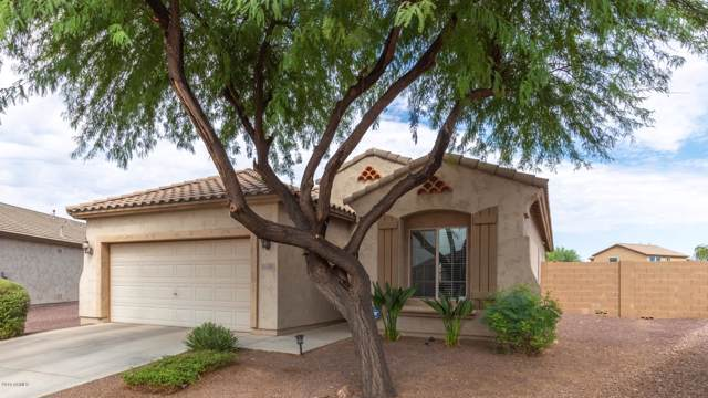 11102 E Sutter Avenue, Mesa, AZ 85212 (MLS #5954837) :: Homehelper Consultants