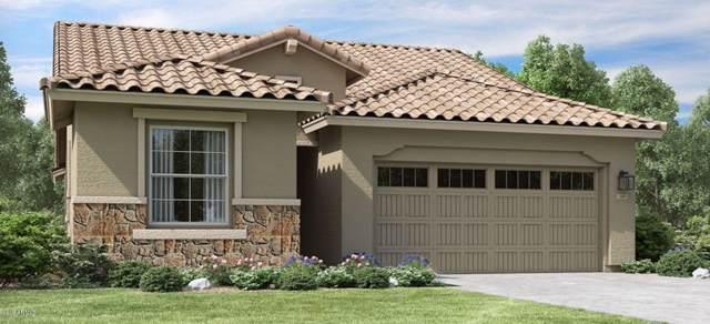 9531 E Tupelo Avenue, Mesa, AZ 85212 (#5954852) :: Gateway Partners | Realty Executives Tucson Elite