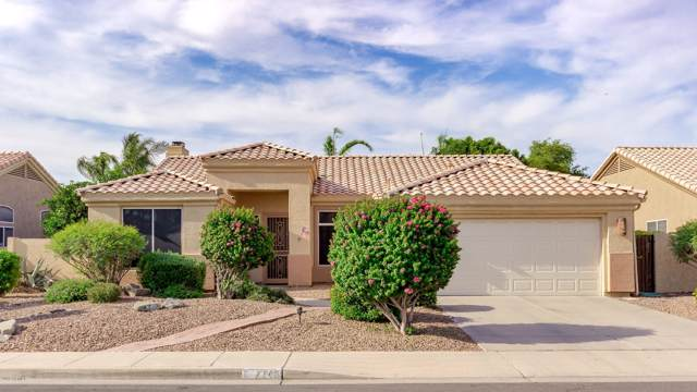 7148 E Lobo Avenue, Mesa, AZ 85209 (MLS #5954940) :: Yost Realty Group at RE/MAX Casa Grande