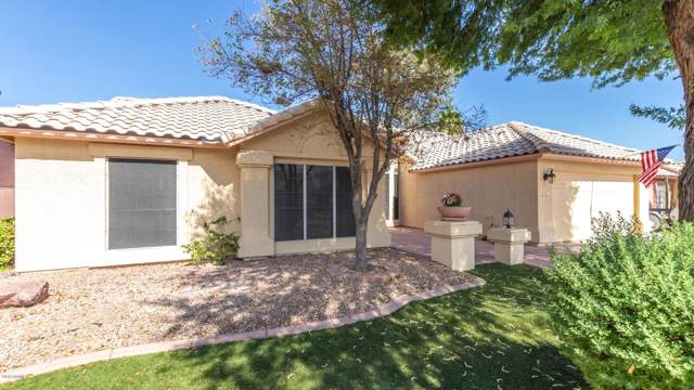 24243 N 41ST Avenue, Glendale, AZ 85310 (MLS #5954948) :: Revelation Real Estate