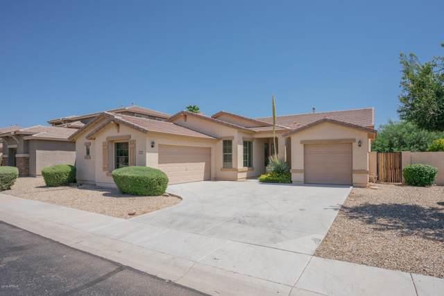 16639 N 173RD Avenue, Surprise, AZ 85388 (MLS #5955010) :: Yost Realty Group at RE/MAX Casa Grande
