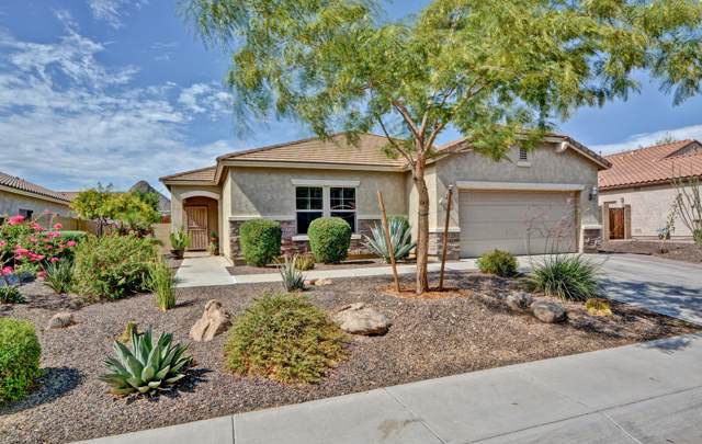 5542 W Tombstone Trail, Phoenix, AZ 85083 (MLS #5955023) :: The Laughton Team