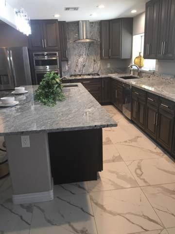 10810 W Sarabande Circle, Sun City, AZ 85351 (MLS #5955026) :: Devor Real Estate Associates