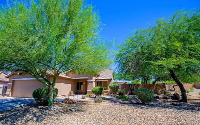 13504 W Peck Drive, Litchfield Park, AZ 85340 (MLS #5955054) :: Openshaw Real Estate Group in partnership with The Jesse Herfel Real Estate Group