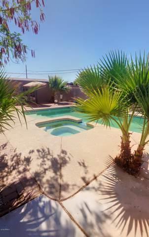 201 W Holly Lane, Avondale, AZ 85323 (MLS #5955116) :: Lifestyle Partners Team