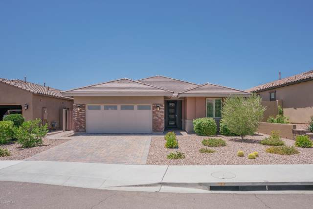 32214 N 129TH Lane, Peoria, AZ 85383 (MLS #5955124) :: Riddle Realty