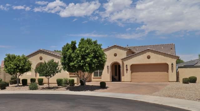 15866 W Bonitos Drive, Goodyear, AZ 85395 (MLS #5955144) :: Team Wilson Real Estate
