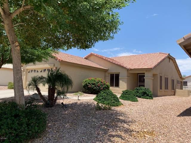 23346 W Twilight Trail, Buckeye, AZ 85326 (MLS #5955148) :: Devor Real Estate Associates