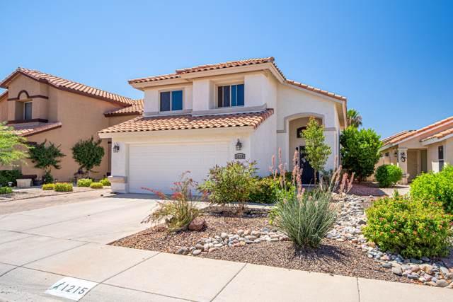 1215 E Muriel Drive, Phoenix, AZ 85022 (MLS #5955242) :: CC & Co. Real Estate Team