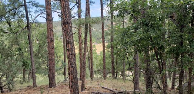 97XX W Juniper Road, Pine, AZ 85544 (MLS #5955243) :: Riddle Realty