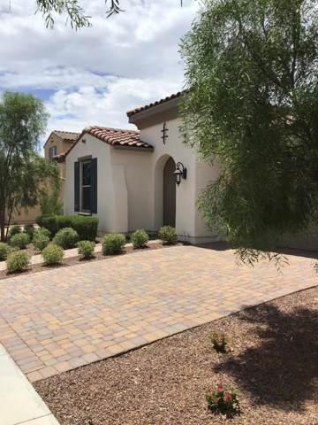 2712 N Acacia Way, Buckeye, AZ 85396 (MLS #5955324) :: Team Wilson Real Estate
