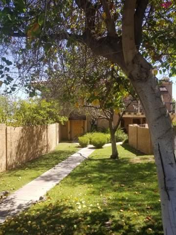 802 E North Lane #3, Phoenix, AZ 85020 (MLS #5955331) :: Team Wilson Real Estate