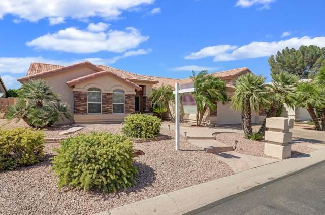 15358 W Catalina Court, Goodyear, AZ 85395 (MLS #5955342) :: Team Wilson Real Estate