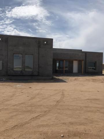 28818 N 251st Avenue, Wittmann, AZ 85361 (MLS #5955390) :: Riddle Realty