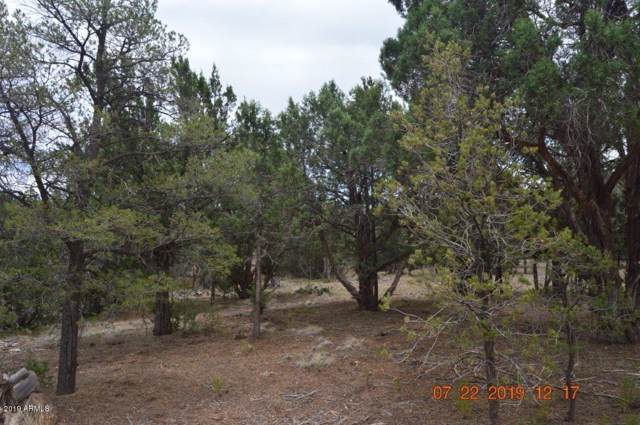 2145 Graphite Road, Clay Springs, AZ 85923 (MLS #5955482) :: Arizona 1 Real Estate Team