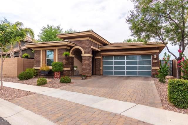 2954 E Patrick Street, Gilbert, AZ 85295 (MLS #5955553) :: Arizona 1 Real Estate Team