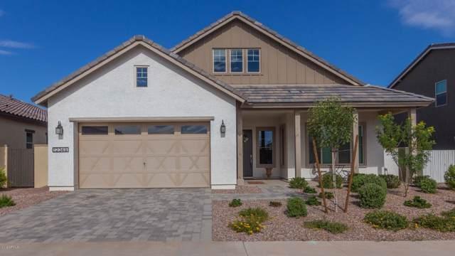 12349 N 145TH Avenue, Surprise, AZ 85379 (MLS #5955618) :: Team Wilson Real Estate