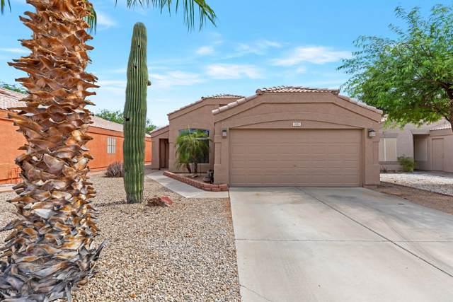 1423 W Mesquite Avenue, Apache Junction, AZ 85120 (MLS #5955643) :: The AZ Performance Realty Team