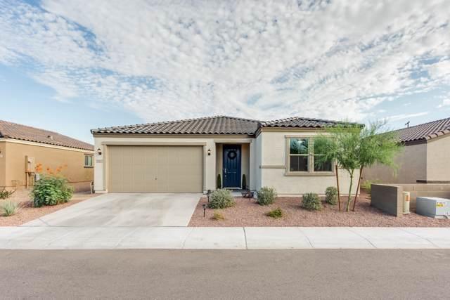 1757 E Chanute Pass, Phoenix, AZ 85040 (MLS #5955693) :: Riddle Realty